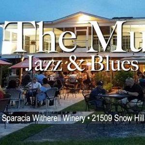 The Mudds Jazz & Blues Band Picking at the Vineyard.