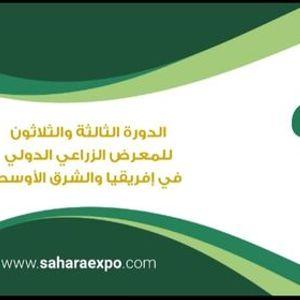 Sahara 2021
