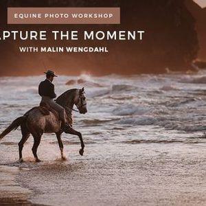 Capture the Moment - Equine Photo Workshop