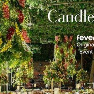 Candlelight Ballet O Quebra-Nozes  luz das velas