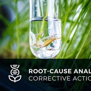 Root-Cause Analysis