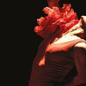 Bizet Carmen 13. Festival Granda