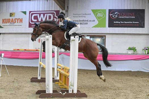 Clear Round jumping