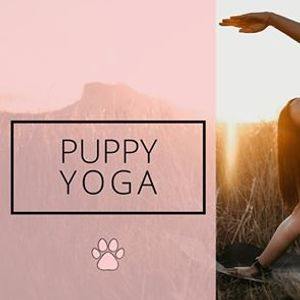 Angel Paws Puppy Yoga