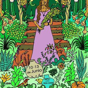 Agrofloresteria Medicinal & Aceites Esenciales