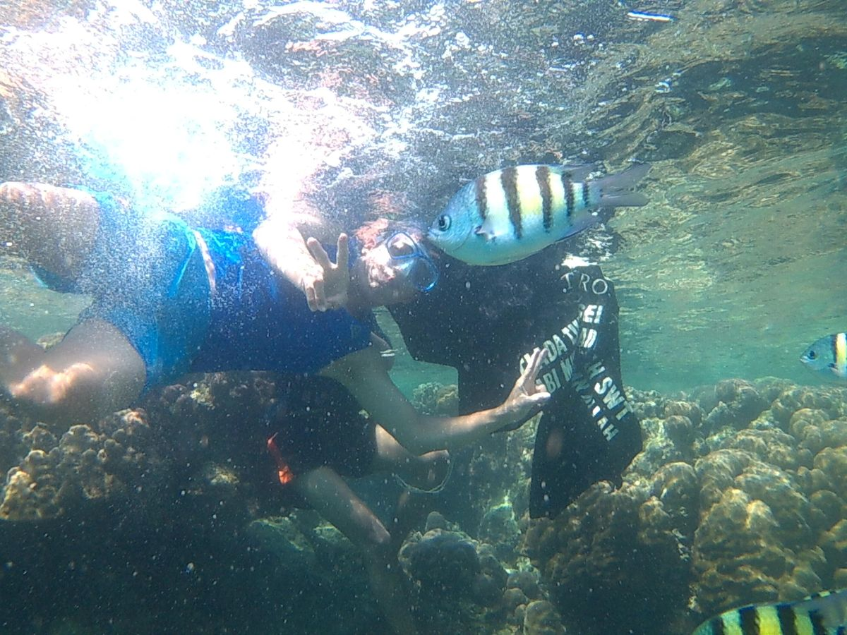 OPEN TRIP  PULAU TIDUNG 2D1N 2020  Everyweekend | Online Event | AllEvents.in