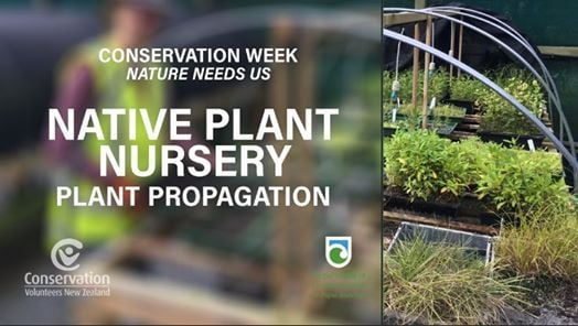Conservation Week - Native Plant Nursery