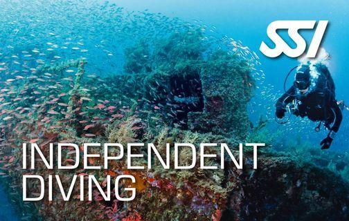 Independent Diving, 10 September | Event in Växjö | AllEvents.in