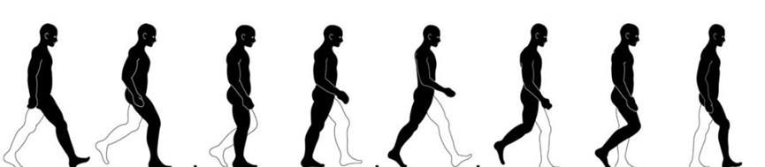 Exploring Gait as it relates to Posture & Balance for Therapy A