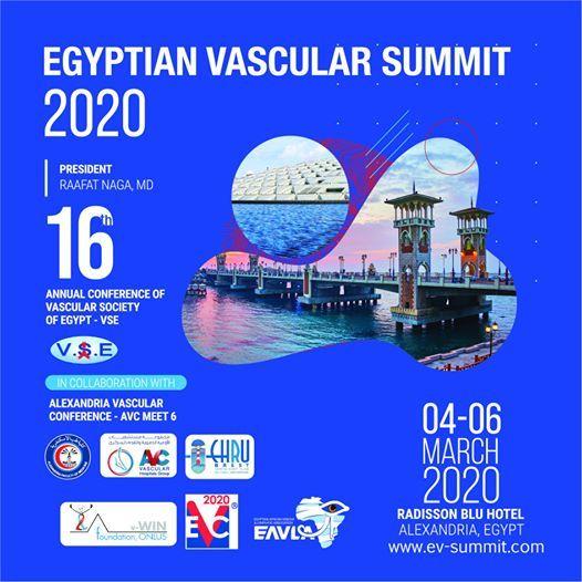 Image result for egyptian vascular summit