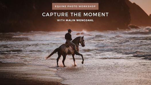 Capture the Moment - Equine Photo Workshop, 5 May | Event in Caldas Da Rainha | AllEvents.in