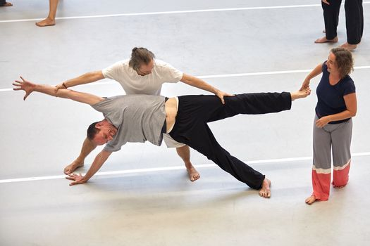 Infoworkshop Teachers Training Nr 14 Holistic Dance Sabine Parzer, 20 March | Event in Schwechat | AllEvents.in