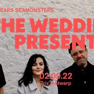 The Wedding Present  Trix