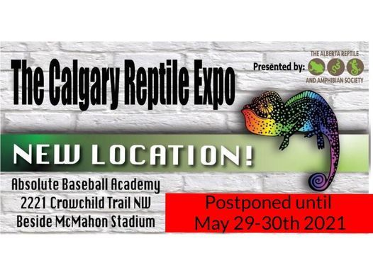Calgary Reptile Expo May 29-30 2021, 29 May | Event in Millarville | AllEvents.in