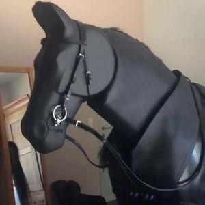 Nog 2 plekjes - Ruiter en paard onder handen met Geert Laenen