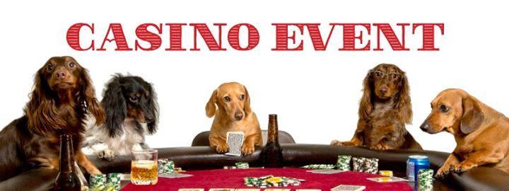 casino arizona nye