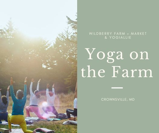 Yoga on the Farm Series, 11 July | Event in Crownsville | AllEvents.in