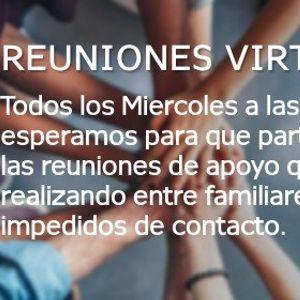 Reuniones Virtuales de Contencin