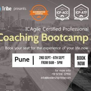 Agile Coaching Master Class (Bootcamp)