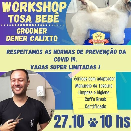 Super Workshop Tosa Bebê, 27 October | Event in Osasco | AllEvents.in
