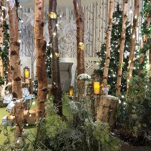 Santas Magical Grotto at World of Wedgwood