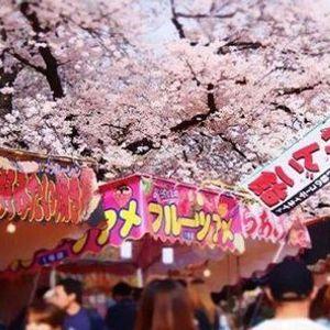 Japan Food Festival Dsseldorf 2021