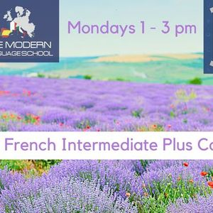 French Course Intermediate Plus
