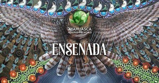 Ayahuasca y Bufo Alvarius en Ensenada B.C., 24 April | Event in Ensenada | AllEvents.in