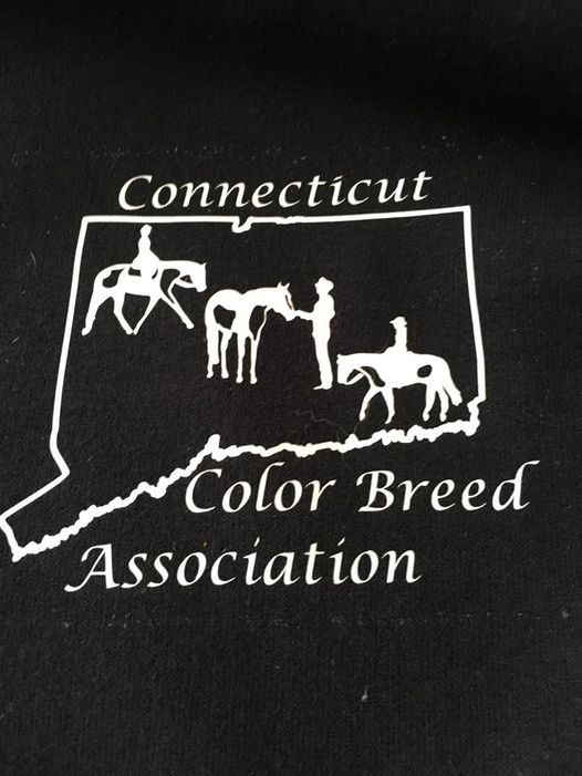Rated CCBA Show #5   Event in Glastonbury   AllEvents.in