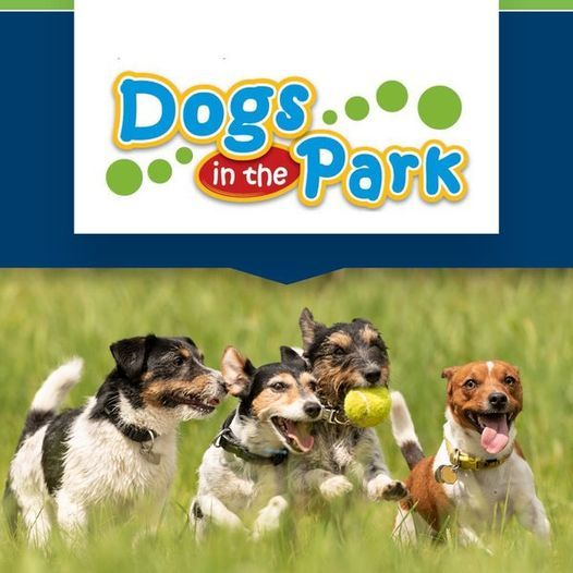 Dogs in the Park NSW Castle Hill, 28 August | Event in Castle Hill | AllEvents.in
