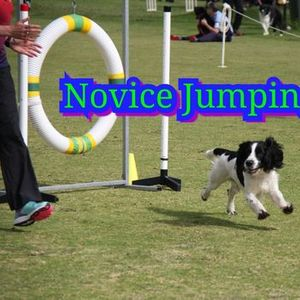 Novice Jumping - Sequences & Full Course