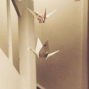 Tea and Origami workshop