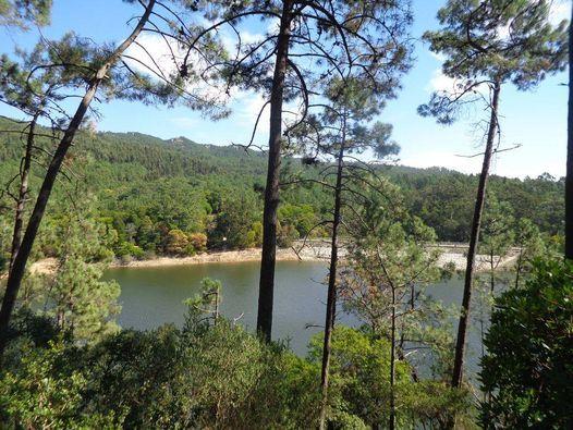Caminhada na Serra de Sintra – No trilho das Pontes | Event in Oeiras | AllEvents.in