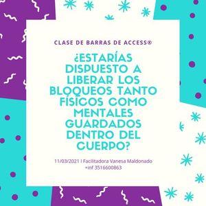 CLASE DE BARRAS DE ACCESS con Certificacin Internacional en Crdoba Capital