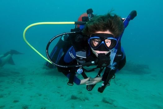 Certified Diver Day Camp-Riviera, 27 July | Event in West Palm Beach | AllEvents.in