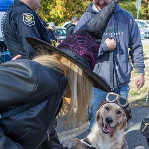 7th Annual Paws in the Park