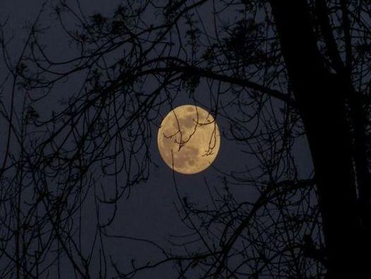 Caminhando em noite de Lua Cheia, 21 August | Event in Cascais | AllEvents.in