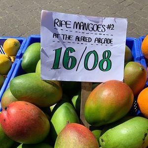 Ripe Mangoes 02
