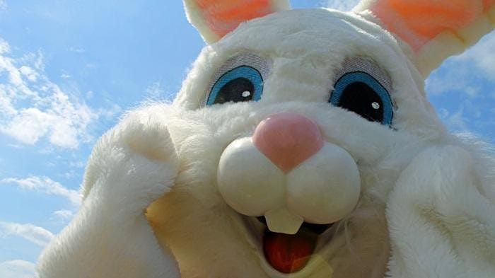 2021 Adult Easter Egg Hunt, 7 August | Event in Sheridan | AllEvents.in
