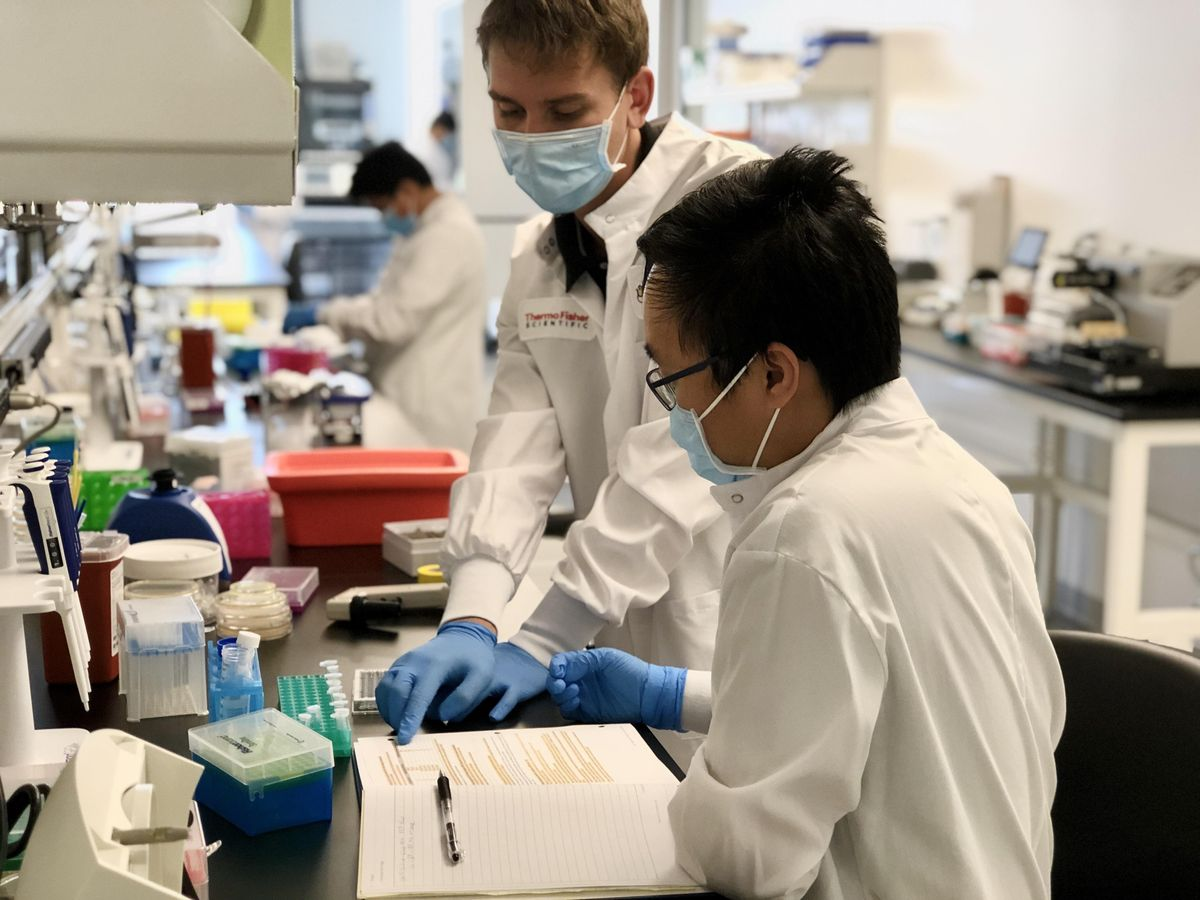 Mammalian Cell Culture Techniques   Event in Irvine   AllEvents.in