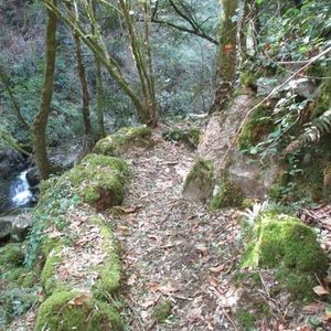 Caminhando do Rio Vouga  Serra do Caramulo