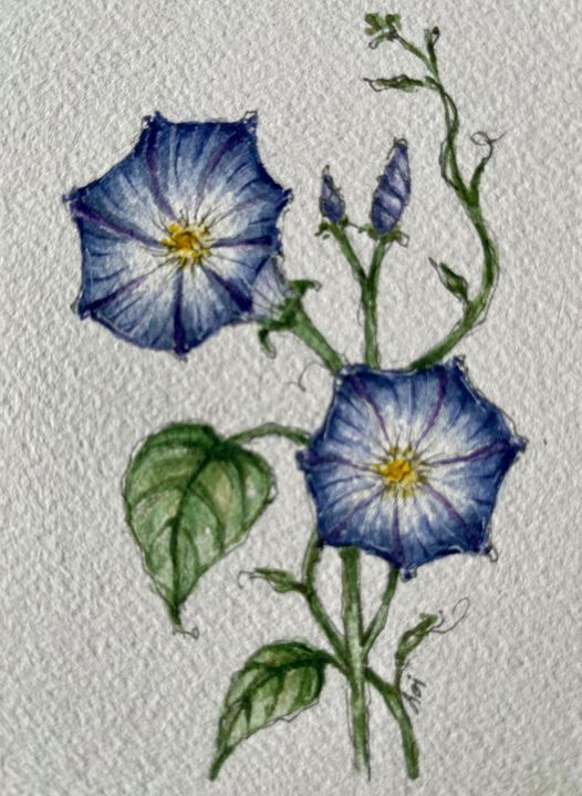 FALL WORKSHOP AND WATERCOLOR 2021, 14 September | Event in Montclair | AllEvents.in