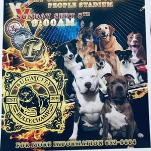 Suga City Dog Show 2019 at Orange Walk, Orange Walk, Belize