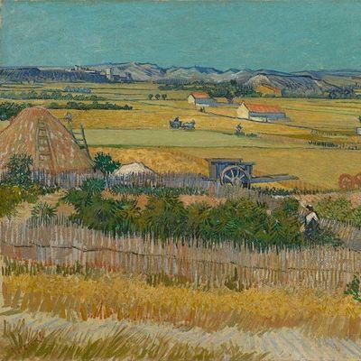 Van Gogh Museum - Amsterdam Livestream Art Tour Program