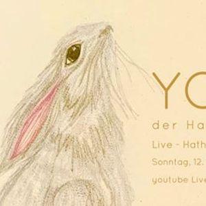 LIVE YOGA - der Hase & das Ei