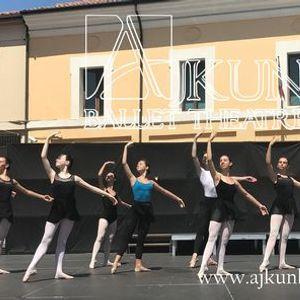 Ballet Program Companys Junior Associates