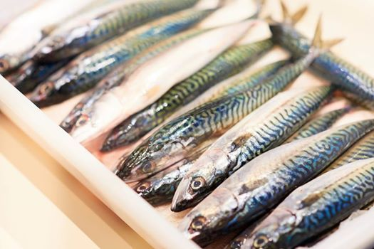 Fish & Seafood - One Day Course