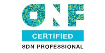 ONF-Certified SDN Engineer Certification (OCSE) 2 Days Training in Southampton