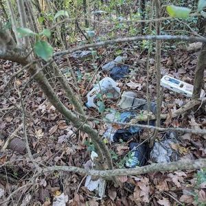 Peachtree Corners Litter Cleanup and Brand Audit