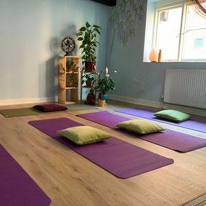 Yoga for Beginners 2h Workshop